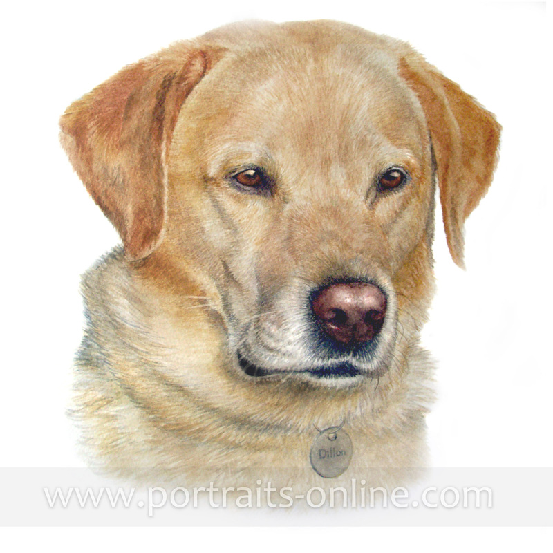A watercolour portrait painting of a Labrador Retriever dog